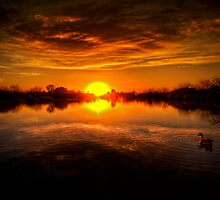Dreamy Sunset II by Saija  Lehtonen