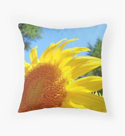 Contemporary art Yellow Sunflower print Photography Throw Pillow