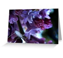 strange insect purple flowers Greeting Card