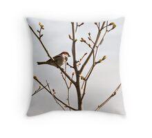 House Sparrow bird Throw Pillow