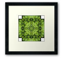 Mint Mandala Framed Print