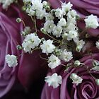 Baby's Breath and Roses  by NicholeHoag