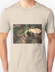 mushroom in the forest Unisex T-Shirt