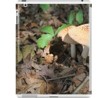 mushroom in the forest iPad Case/Skin