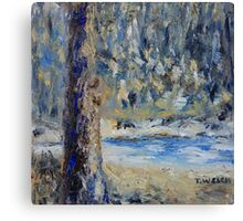 Fir Tree Pond  Canvas Print