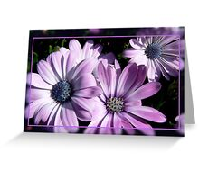 Purple and blue Greeting Card