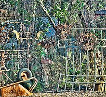 guardians of the garden by vincefoto