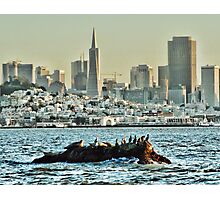 the rock and the city Photographic Print