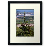 Tree View Framed Print