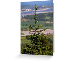 Tree View Greeting Card