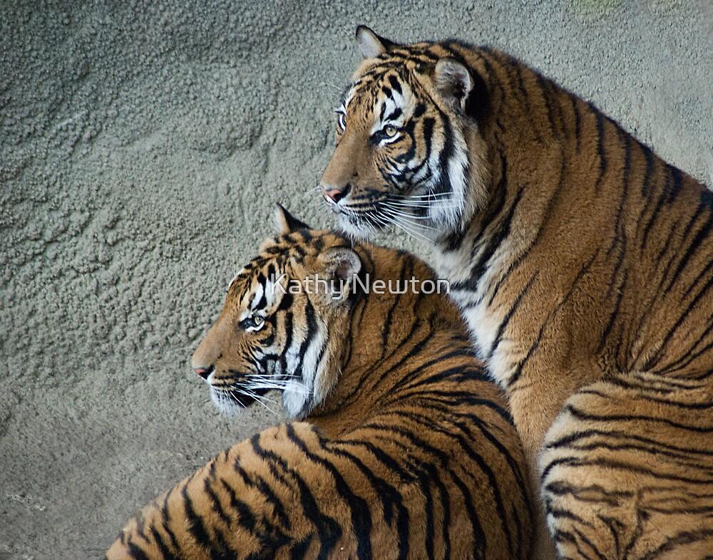Side by Side - Cincinnati Zoo by Kathy Newton