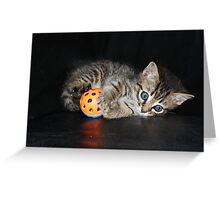 a playful kitten Greeting Card