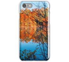 Autumn Contrast iPhone Case/Skin