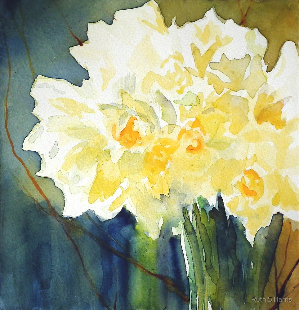 Daffs for Mum by Ruth S Harris