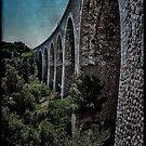 old rails by Chloé Ophelia Gorbulew