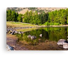 Reflections - Blea Tarn Canvas Print