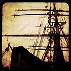 Maiden Voyage by Andrew Paranavitana