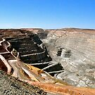 "The ""Super Pit"" by Karina  Cooper"