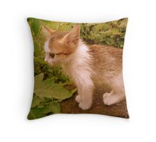 AFTERNOON HIDEOUT  Throw Pillow