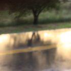 Rain Road by Leslie Guinan