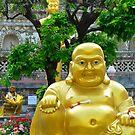 The Buddha Garden by Brendan Buckley