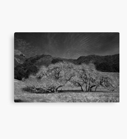 There For You Canvas Print