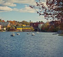 the Exeter River 2 by apsjphotography