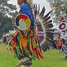 Dances With Spirit  by heatherfriedman
