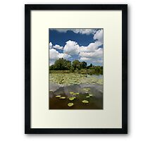 Lilly Pad Lake - fordwich Framed Print