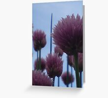 Chives Against A Blue Sky Greeting Card