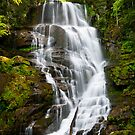 Eastatoe Falls - WNC Waterfall Photography by Dave Allen