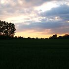 sunset over the fileds by Jodie E