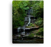 Tom's Branch Falls - Smoky Mountains Canvas Print