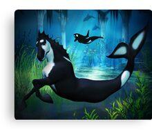 Killer Whale Sea Horse Canvas Print