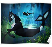 Killer Whale Sea Horse Poster