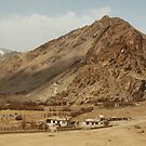 Ladakh Valley by Neeraj Nema