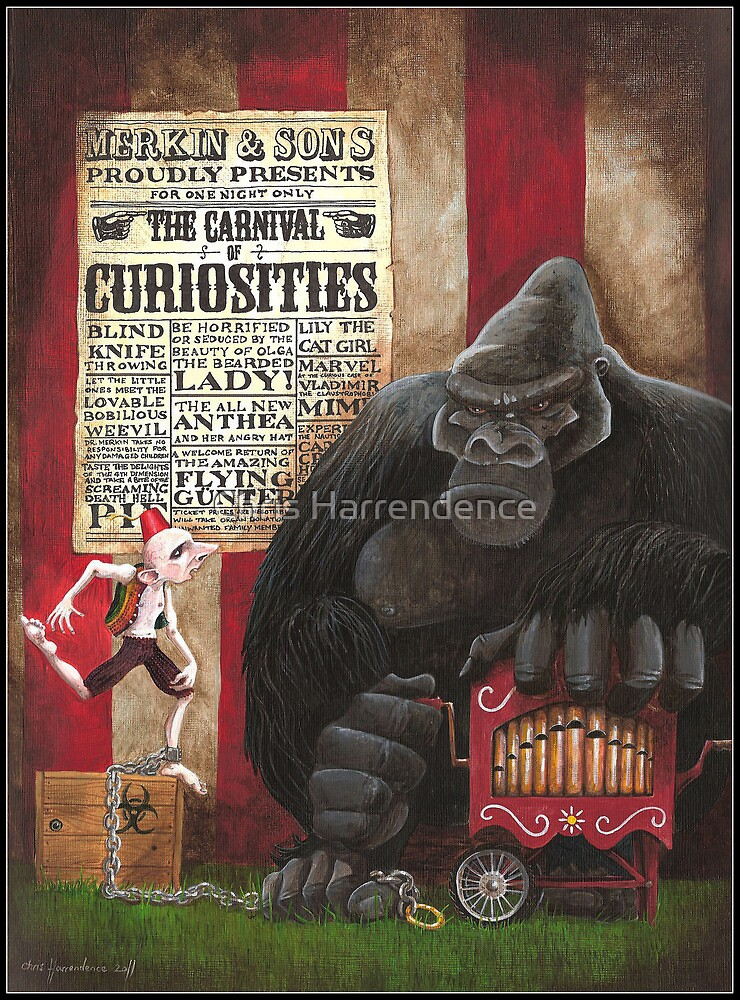 Who are you calling a monkey? by Chris Harrendence