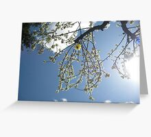 Smile It Feels Good Rejoice Image # 3806 Greeting Card