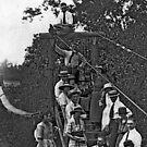 Swinging Bridge at Hickory Creek by © Brady-Hughes- Beasley Archives