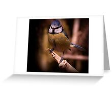 The Blue Tit Greeting Card