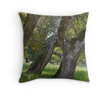 Three oaks on a hillside- Toro Park, Monterey Throw Pillow