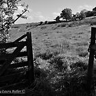 The Way Through - County Antrim by Laura Butler