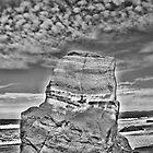 BW Fish Rock by vincefoto