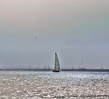 Sailing in Fog by vincefoto