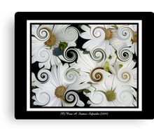 Daisies (Curlicue Special Effect) Canvas Print