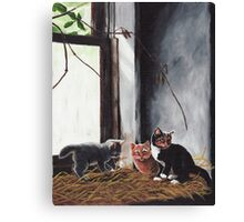 Kittens Playing Canvas Print