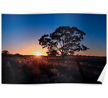 A Cloudless Dawn Poster