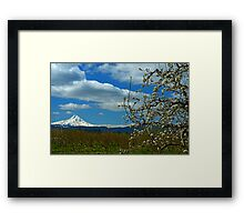 Fruit Loop Landscape Framed Print