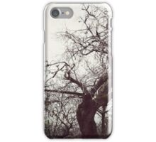 Misty Afternoons iPhone Case/Skin