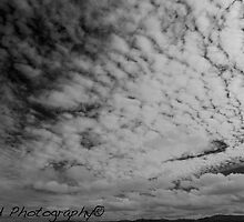 wide sky of melbourne by mehrzad87